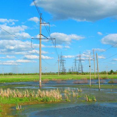 swamp_electricity_high_voltage_summer_wasteland_prairie_62022_1920x1080
